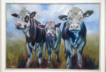 Three Curious Cows